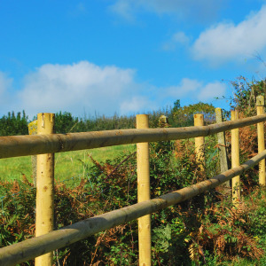 Post and rail fencing installed by Radley Veale, South Hams