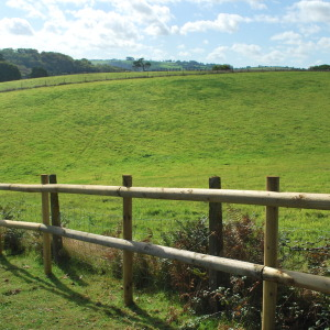 Agricultural fencing for field in South Hams