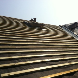 Roof for new extension